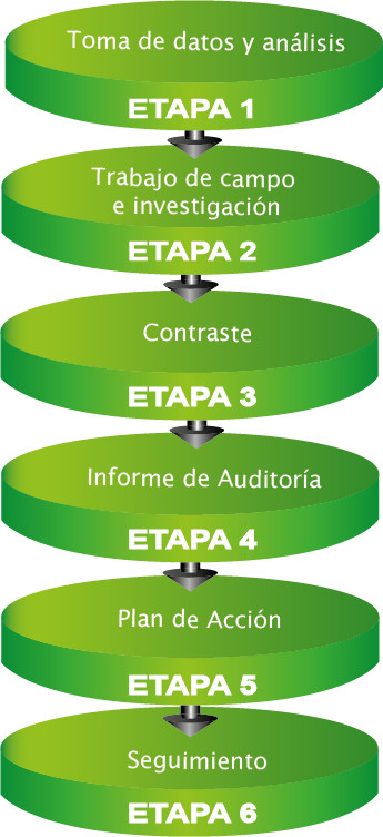 Fases Auditoría de Marketing