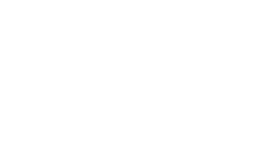 Noega System